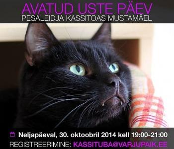 Avatud uste päev Pesaleidja kassitoas 30.oktoobril kell 19.00-21.00 Submitted by Jane on Esmasp, 27/10/2014 - 15:39